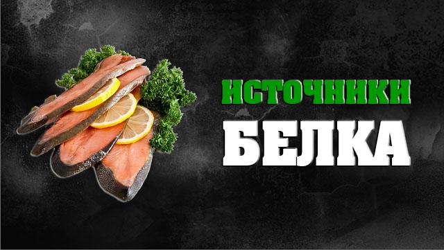 belok-istochniki-belka-01