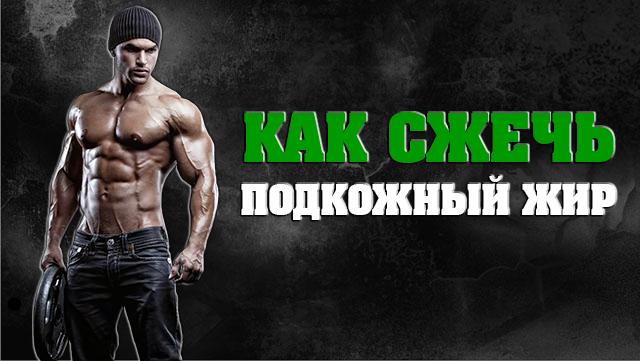 kak-sjech-podkojniy-jir-01