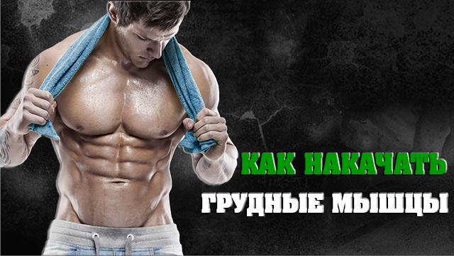 kak-bistro-nakachat-grudnie-mishci-01