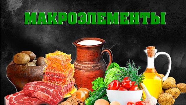 macroelementi-spisok-01