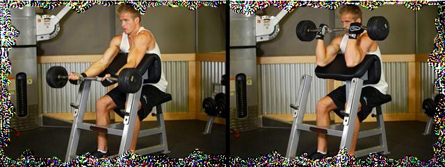 yprazneniya-na-bicepsi-so-shtangoy_5