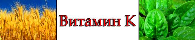 vitamini-vse-o-vitaminah 6
