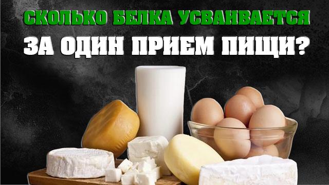 skolko-belka-ysvaivartsa-za-odin-priem-pishi-01
