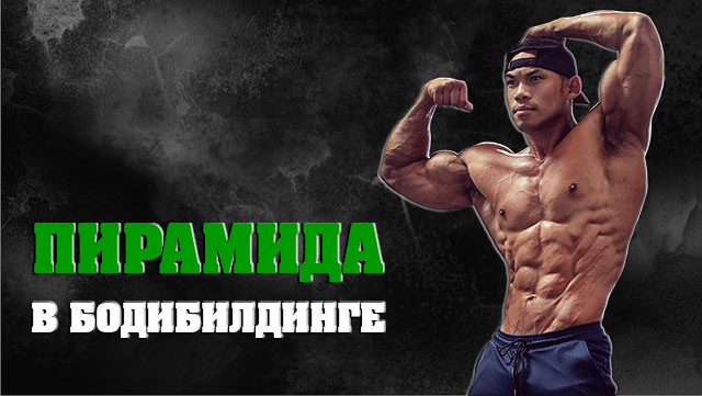 princip-piramida-v-bodybuildinge-01