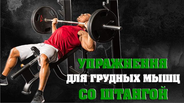 yprazneniya-dlya-grydnih-misch-so-stangoy--1