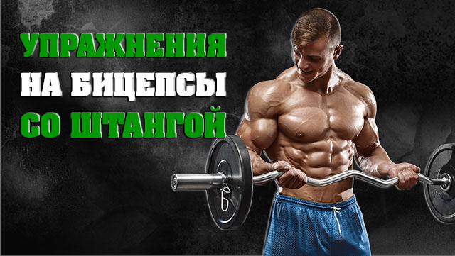 yprazneniya-na-bicepsi-so-shtangoy--1