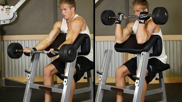 yprazneniya-na-bicepsi-so-shtangoy--6