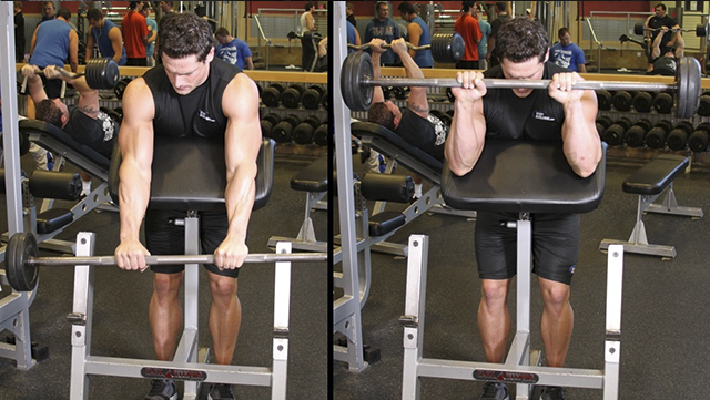 yprazneniya-na-bicepsi-so-shtangoy--9