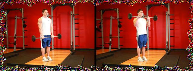 yprazneniya-na-bicepsi-so-shtangoy_6