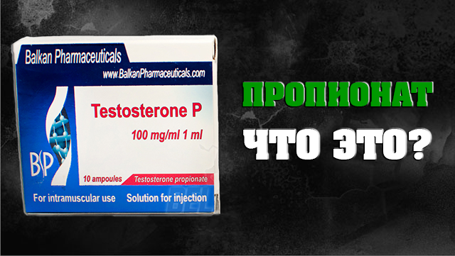 testosteron-propionat-chto-eto-kyrs-testosterona-propionata-01