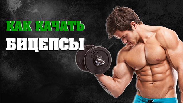 kak-pravilno-kachat-bicepsi-01