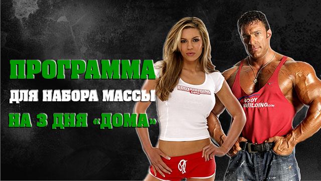 programma-trenirovok-dlya-nabora-michesnoy-massi-na-tri-dnya-v-domashnih-ysloviyah-01
