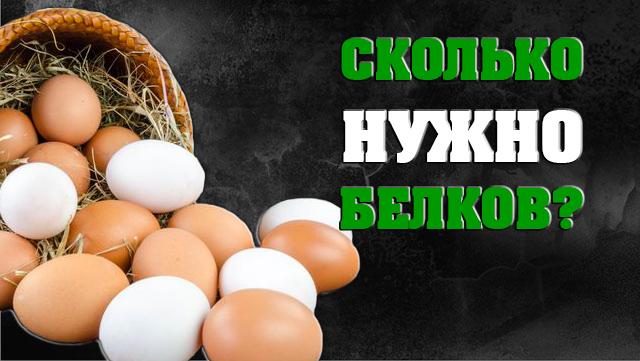 skolko-gramm-belkov-nyjno-v-den-chtobi-pochydet-01